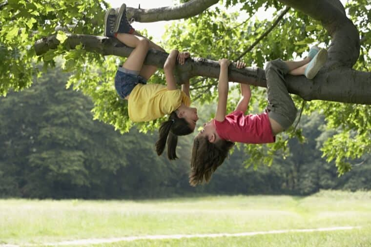 kids hanging upside down from tree